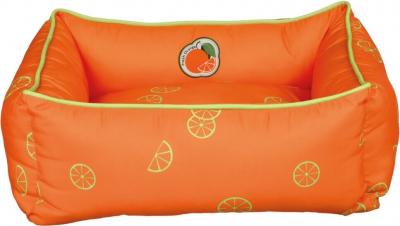 Lit Fresh Orange