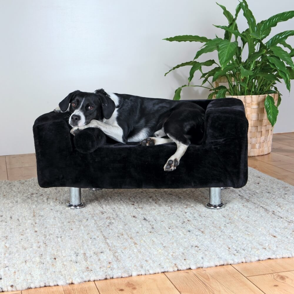 Canap chien king of dogs sofa panier et corbeille for Canape pour chien