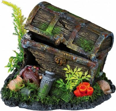 Coffre au trésor avec plante