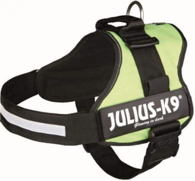 Geschirr Power Julius-K9 in grün
