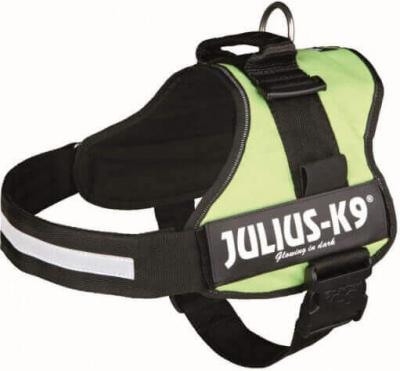 Harnais Power Julius-K9 vert pastel