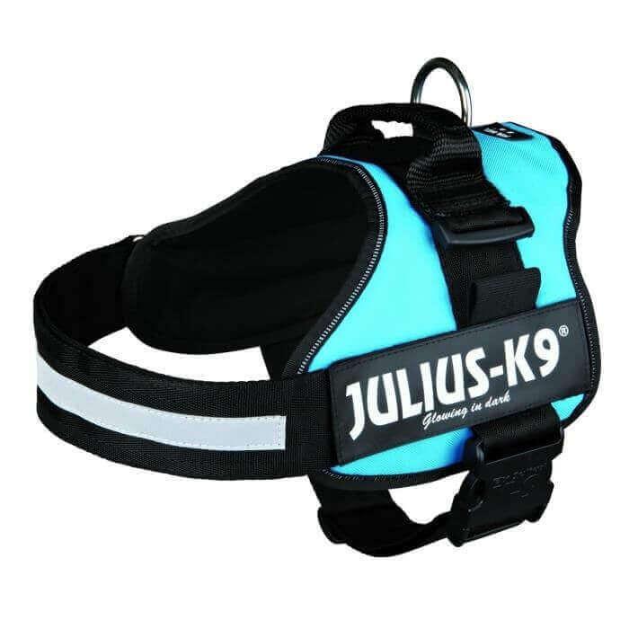 Harnais chien Power Julius-K9 aigue-marine_0