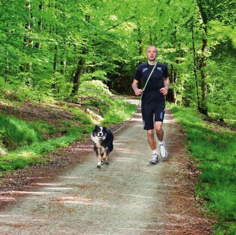 Laisse jogging polyvalente