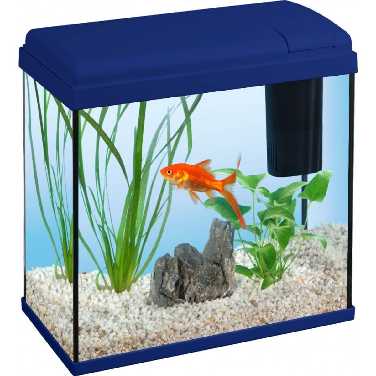Aquarium Dory Starter 18l Aquarium Et Meuble