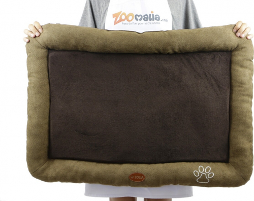 Cojín ZOLIA DINO color marrón  2 tamaños_4