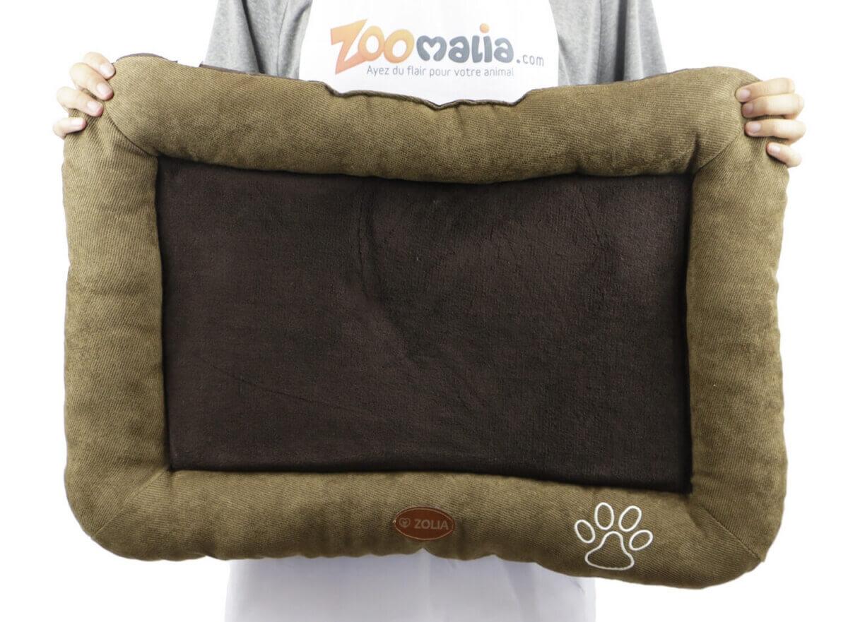 Cojín ZOLIA DINO color marrón  2 tamaños_3