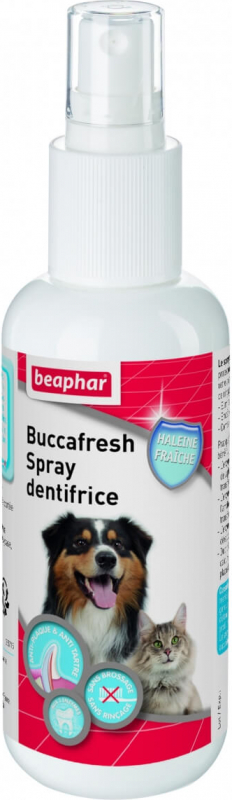 Buccafresh, spray dentifrice