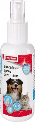 Buccafresh, spray dentifrice