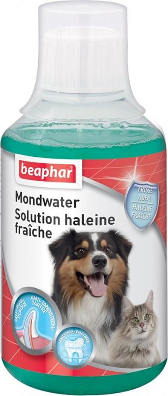 Solution haleine fraîche facile à utiliser pour chiens et chats