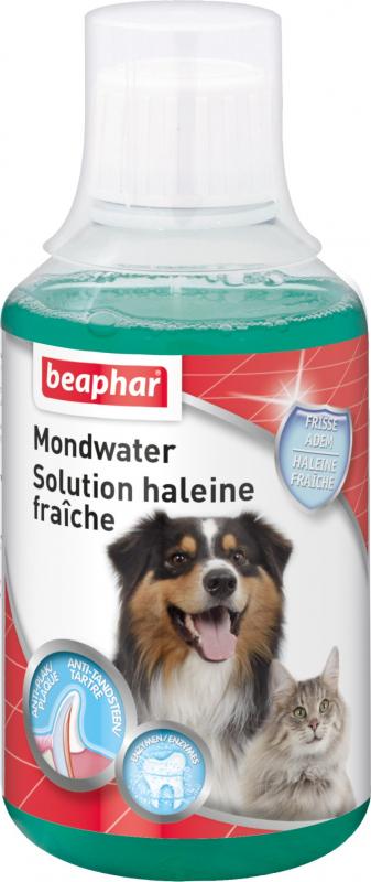 Collutorio alito fresco facile da utilizzare per cani e gatti