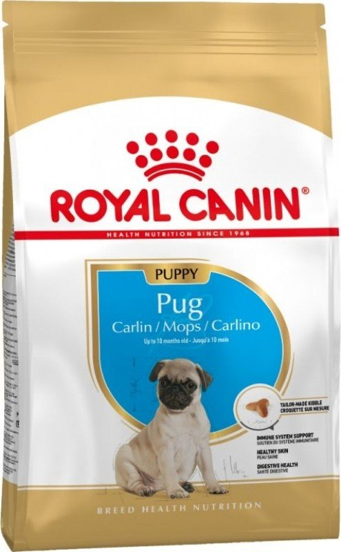 Royal Canin Breed Puppy Pug pour Carlin Chiot