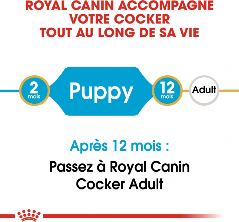 Royal Canin Breed Cocker Junior