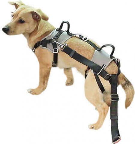 harnais de s curit travel protect gris accessoires voiture chien. Black Bedroom Furniture Sets. Home Design Ideas