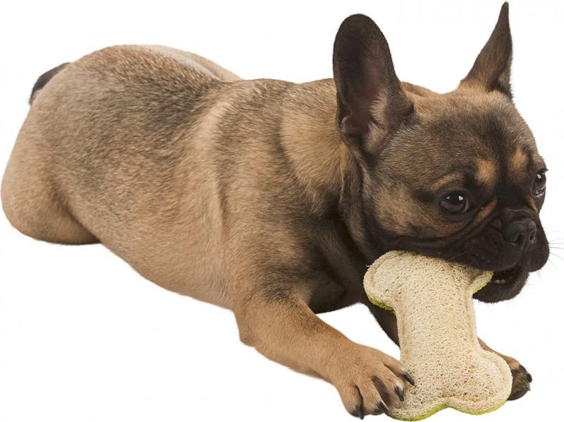 Luffa os pour chien, 14,5 cm, vert