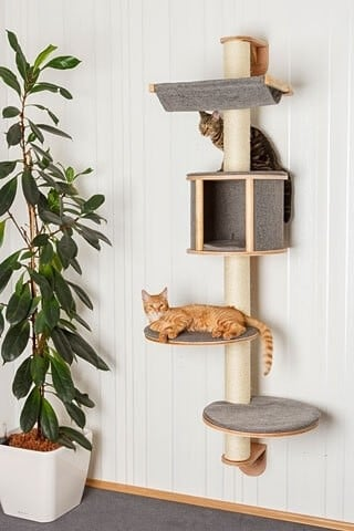 Árbol para gatos mural Dolomit Tofana, 168 x 75 cm color gris