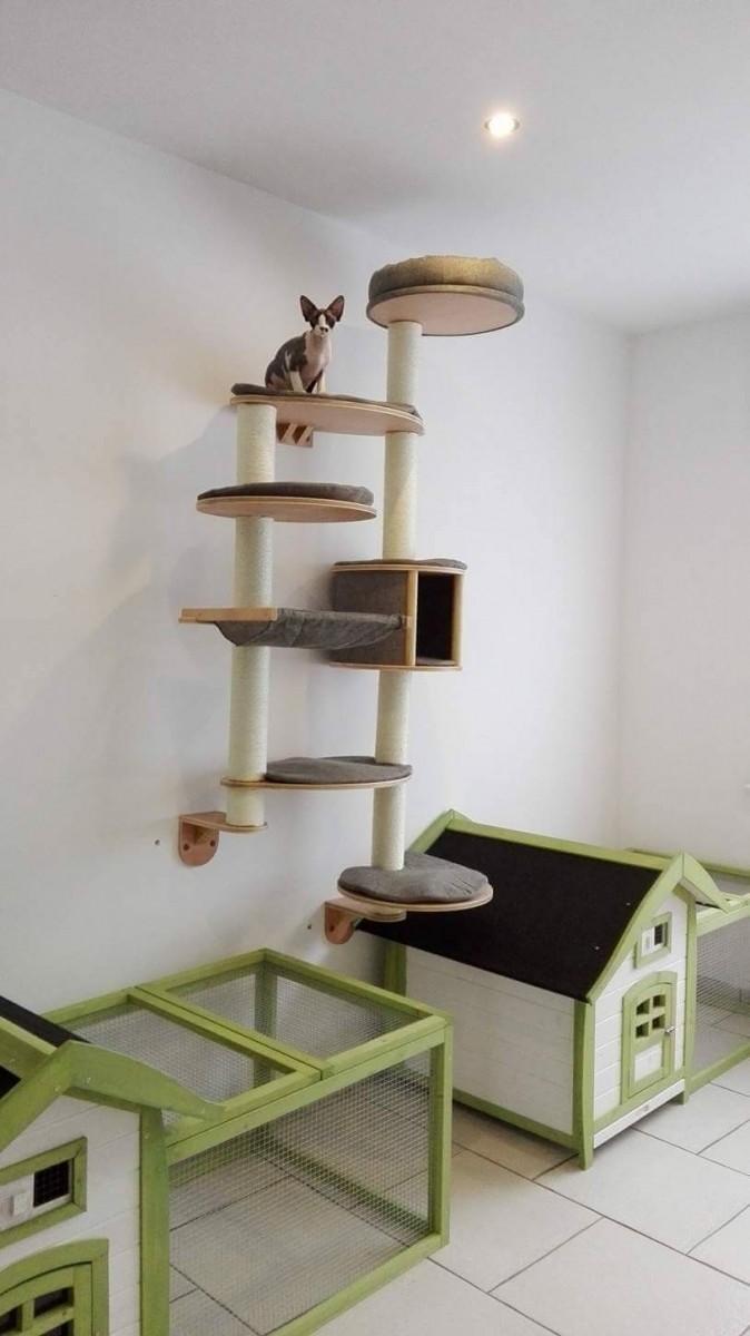 arbre chat mural dolomit xl tofana 168 x 75 cm gris arbre chat. Black Bedroom Furniture Sets. Home Design Ideas