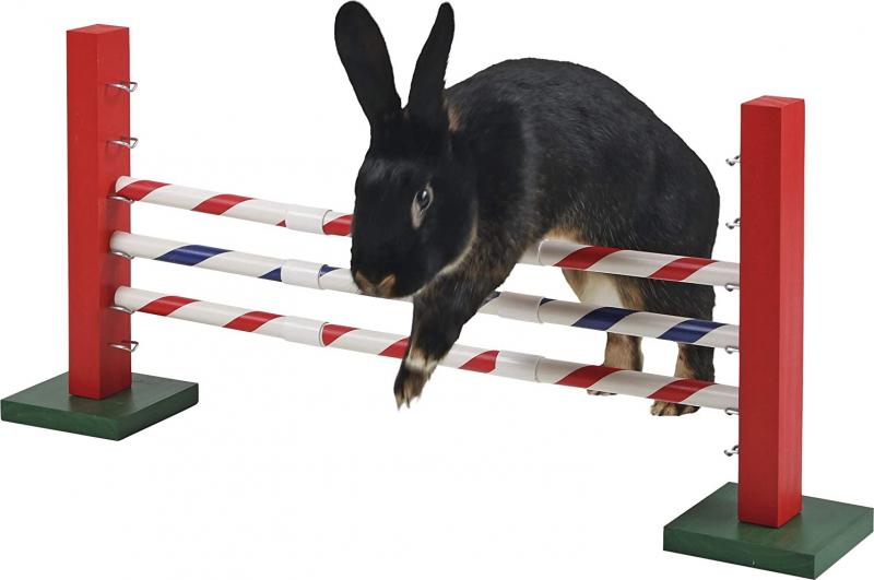 Agility Obstacle pour rongeur 70 x 5 x 35 cm