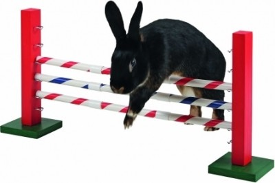 Agility Obstáculo para roedores 70 cm de largo x 5 cm de ancho x 35 cm de alto