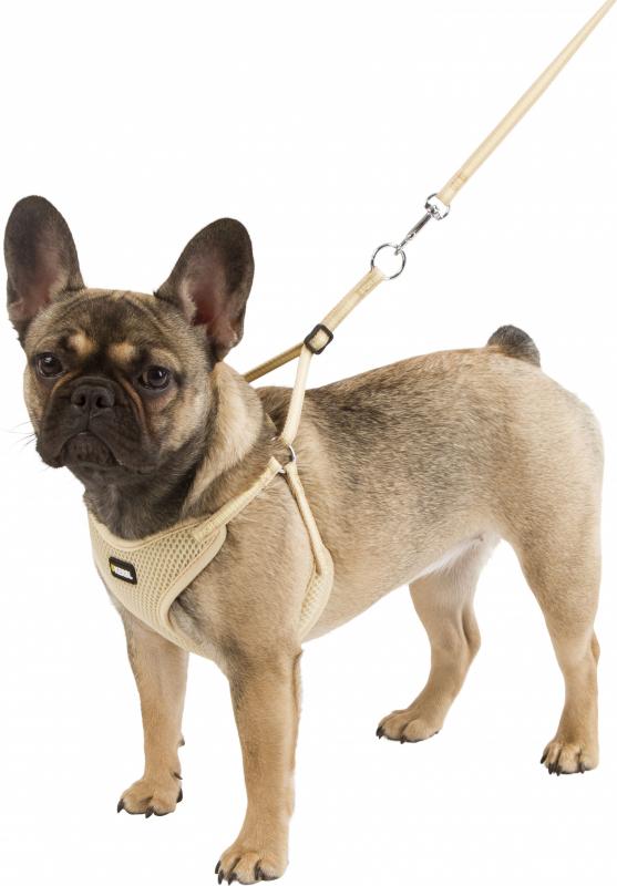Arnés confort para cachorros con correa BEIGE