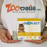 DUOFLECT Pipettes antiparasites pour chat