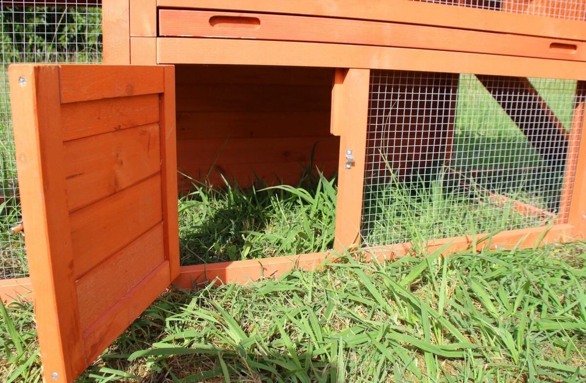 Clapier lapin ZOLIA DALIA_5