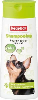 Shampooing Bulles, pelage brillant