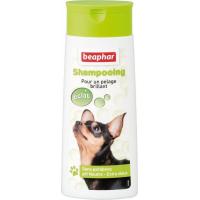 Shampoing Bulles, pelage brillant