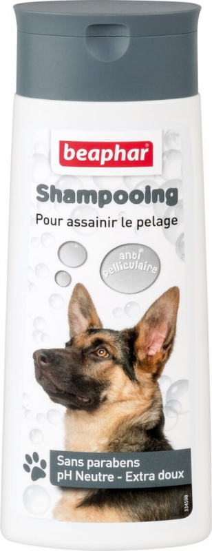 Shampoing Bulles, antipelliculaire