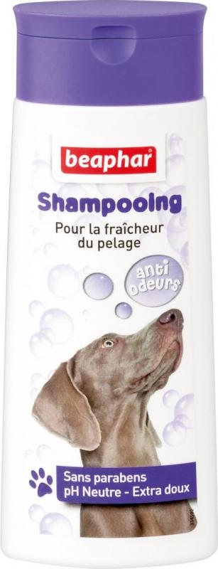 Shampooing Bulles, anti-odeurs