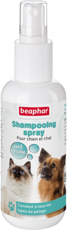 Shampoing spray Bulles sans rinçage