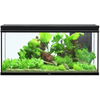 Aquarium Elegance expert noir éclairage LED