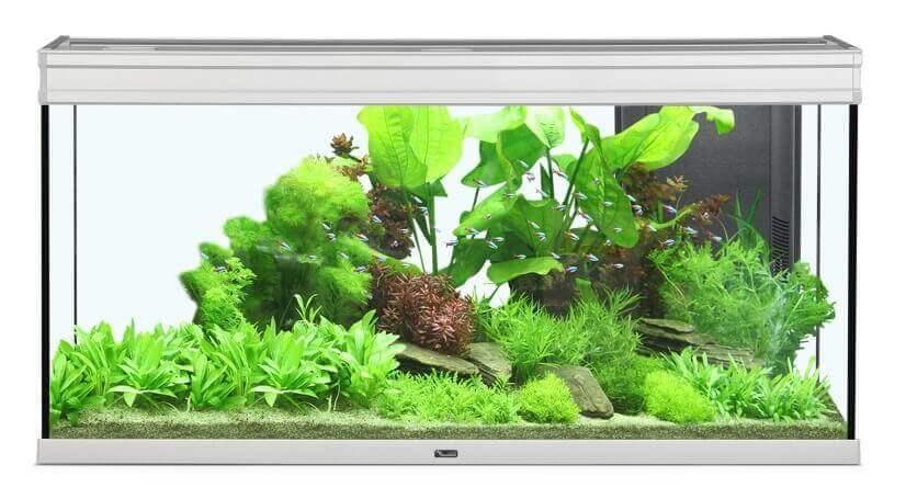 Aquarium Elegance expert inox éclairage LED_4