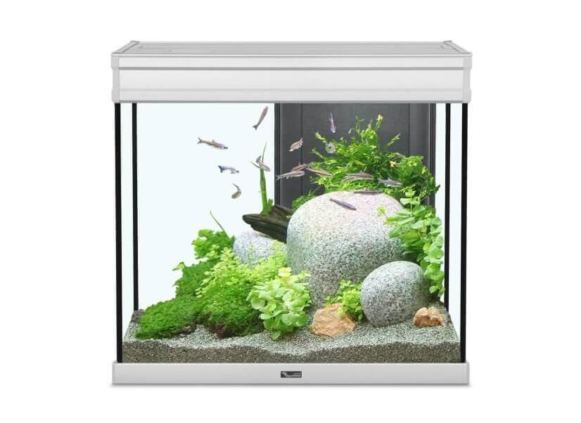 Aquarium Elegance expert inox éclairage LED_0