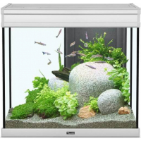 Aquarium Elegance expert inox éclairage LED