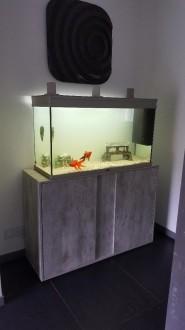 33312_Meuble-coloris-béton-pour-aquarium-Elegance-expert_de_EMILIE_199971913559ccbaf3164305.47922942