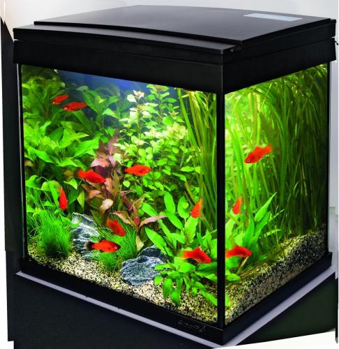 Aquariums Aqua 30 LED - Tropical Kit_0