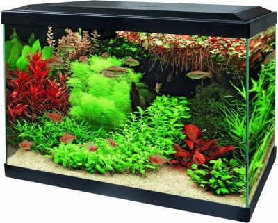 Aquariums Aqua 70 LED - Tropical Kit Blanc ou Noir