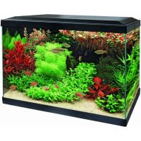 Aquariums Aqua 70 LED - Tropical Kit Blanc ou Noir (1)