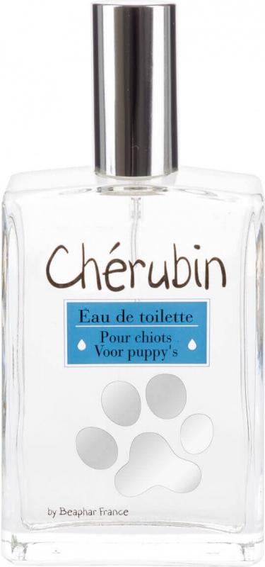 Eau de toilette Chérubin pour chien