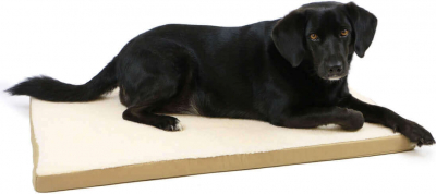 Matelas ZOLIA NAYA beige pour chien