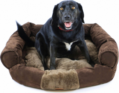 Cojín con forma de sofá para perro ZOLIA MOLY - 81cm