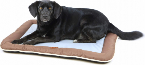 Coussin pour chien ZOLIA HOLLY_3