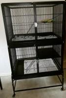 Cage-ZOLIA-FUNZY-pour-Furet-et-rongeurs---H160cm-_de_audrey_5403457325b20d5fbe24561.10985621