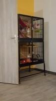 Cage-pour-furet-et-rongeurs-ZOLIA-FUNZY_de_MARINE_187837014659b064609b0722.25909098