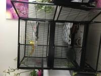 Cage-pour-furet-et-rongeurs-ZOLIA-FUNZY_de_Sandrine_473920792591323bd271e78.00588722