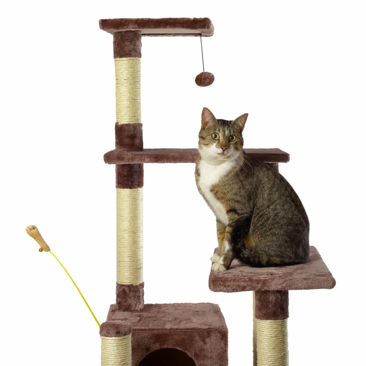 Rbol para gatos zolia baya 148 cm rbol para gato - Arbol gato ikea ...