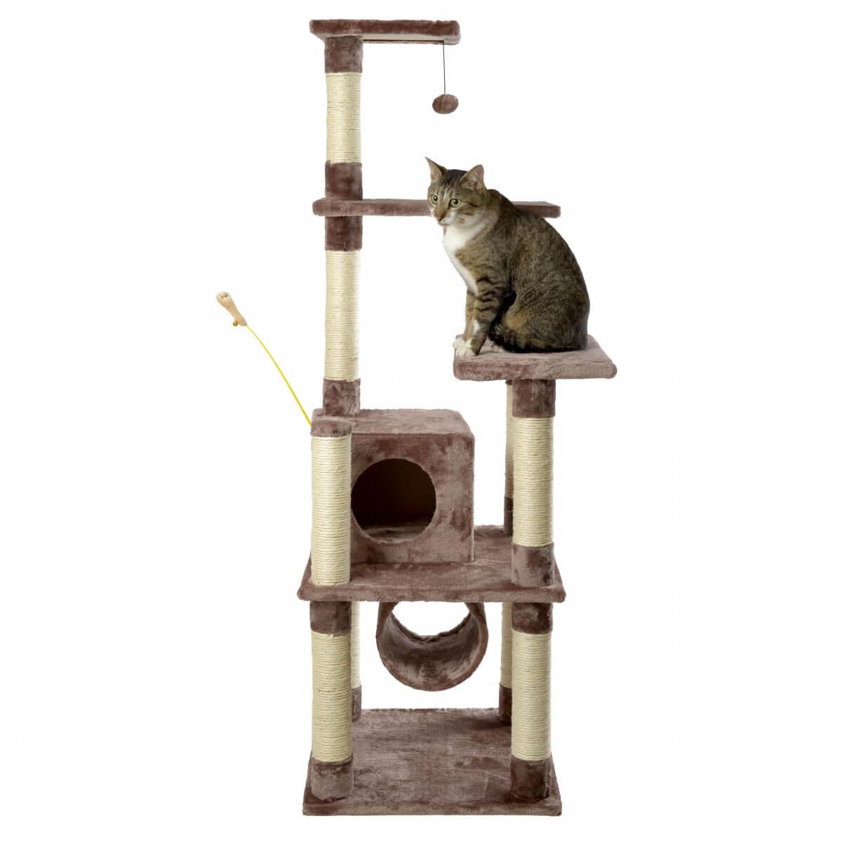 arbre chat zolia baya 148cm arbre chat. Black Bedroom Furniture Sets. Home Design Ideas