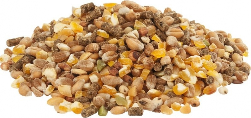 Gold 4 Mix Country's Best Mélange de céréales avec granulés de ponte