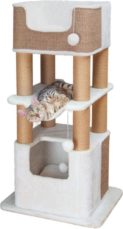 Kattenboom LUCIANO