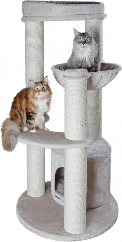 arbre chat xxl carlos pour grands chats. Black Bedroom Furniture Sets. Home Design Ideas